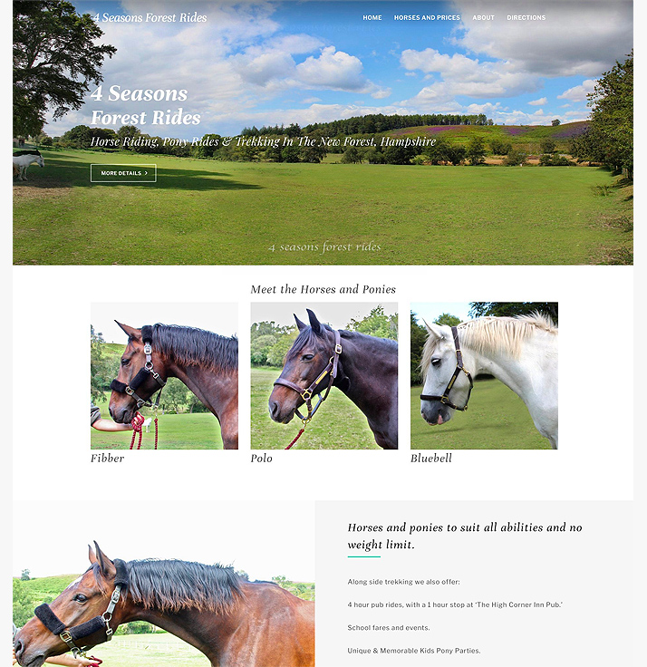 A beautiful brochure website for a riding school in the New Forest.